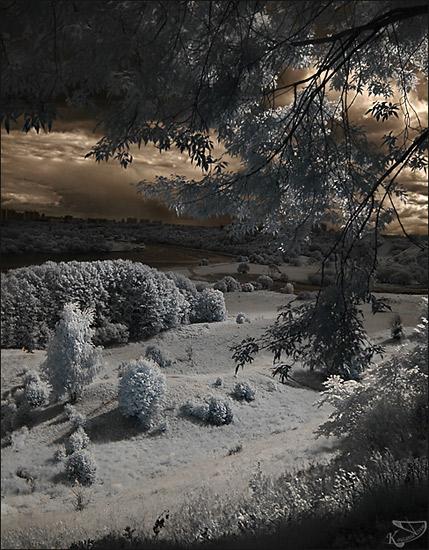 Инфракрасная съемка - съемка в невидимых лучах, придает фотографиям некую сказочность.  Белая трава, белая листва...